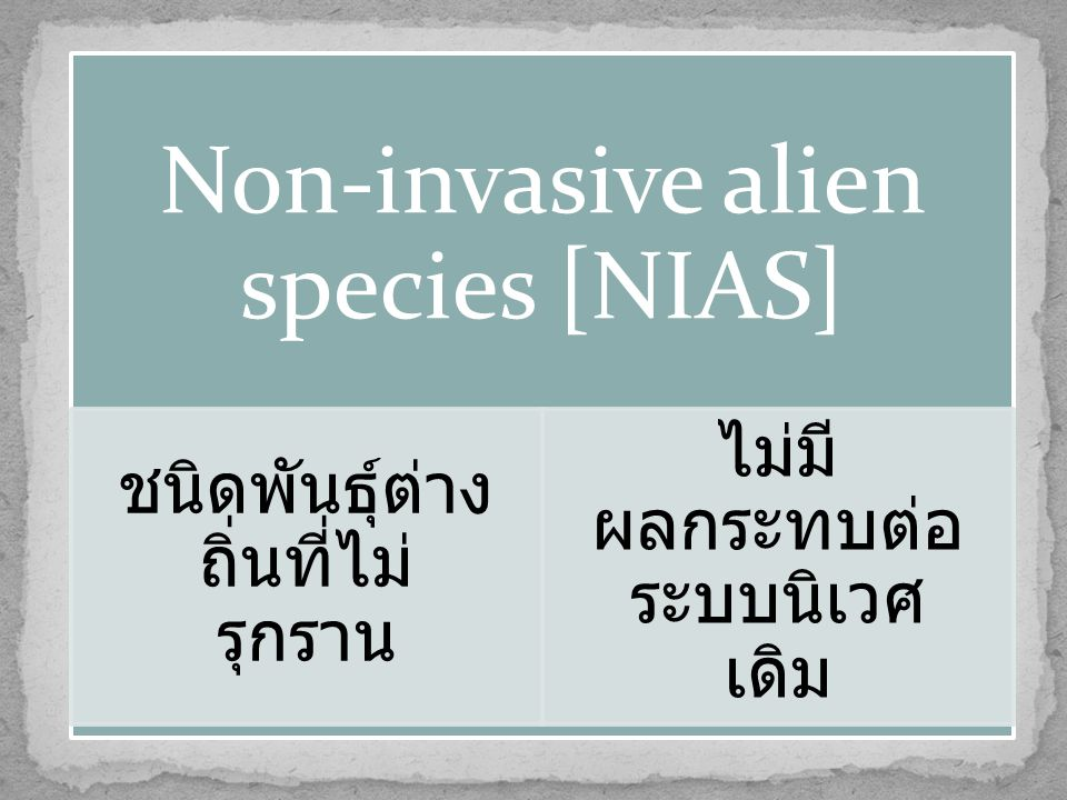 Non-invasive alien species [NIAS]